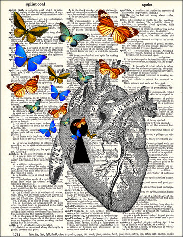 An image of a(n) Heart Keyhole and Butterflies Dictionary Art Print.