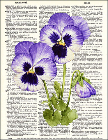 An image of a(n) Pansies Watercolor Dictionary Art Print.