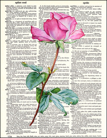 An image of a(n) Pink Rose Dictionary Art Print.