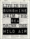 An image of a(n) Wild Air Quote Dictionary Art Print.