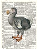 An image of a(n) Dodo Bird Dictionary Art Print.