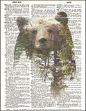 An image of a(n) Double Exposure Bear Dictionary Art Print.