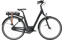 Bike of the Month: Affordable Dutch Electric Bike