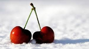 Cherries On Snow Wax Melt Snap Bar - Candles Sniffs & Gifts