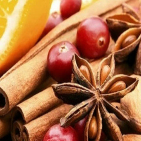 Cranberry & Orange Spice Wax Melt Snap Bar - Candles Sniffs & Gifts