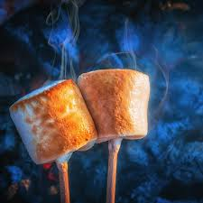 Toasted Marshmallow Wax Melt Snap Bar - Candles Sniffs & Gifts