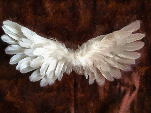Angel Wings Car Freshener - Candles Sniffs & Gifts