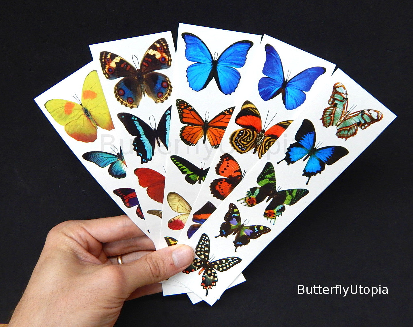 Temporary Butterfly Tattoos
