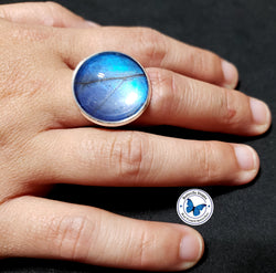 real butterfly wing ring