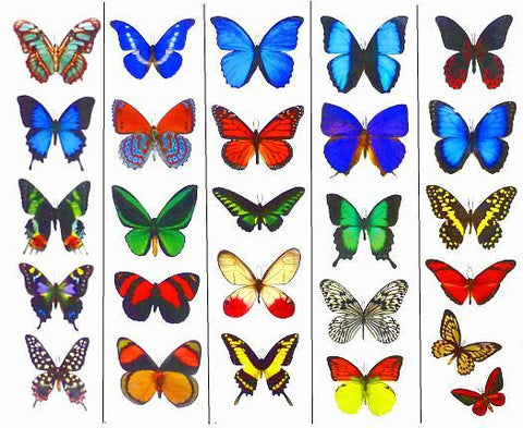 Butterfly Tattoos - 5 Sheets