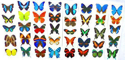 Butterfly Stickers - All 8 Unique Sheets