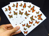 Monarch Butterfly Tattoos - 5 Sheets