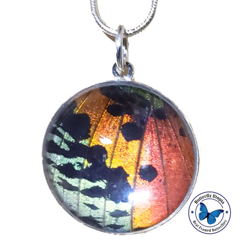 Sunset Moth Butterfly Jewelry pendant