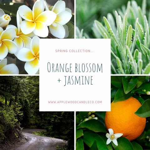 Orange Blossom + Jasmine