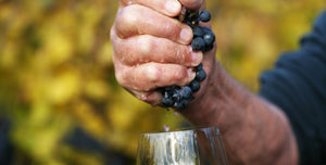 What makes Natural Wine...
