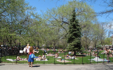 Tompkins Square Park.  Photo via thelodownny.com.