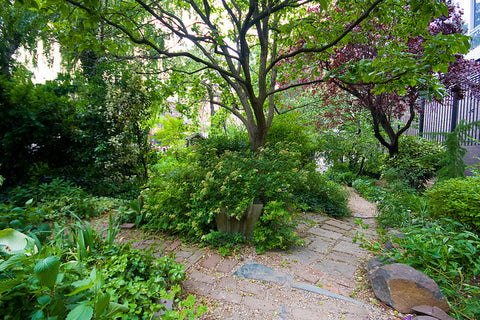 Liz Christy Community Garden.  Photo via Garrett Ziegler on Flickr.