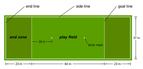 an image of frisbee play field design