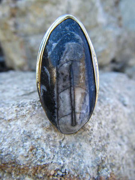 The Empress Ring + Orthoceras Fossil // Size 7