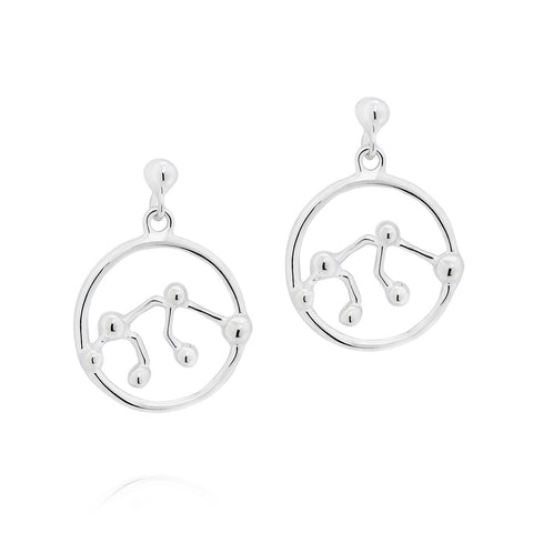 Aquarius Astrology Drop Studs