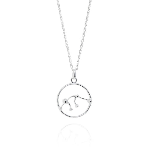 Aquarius Astrology Necklace