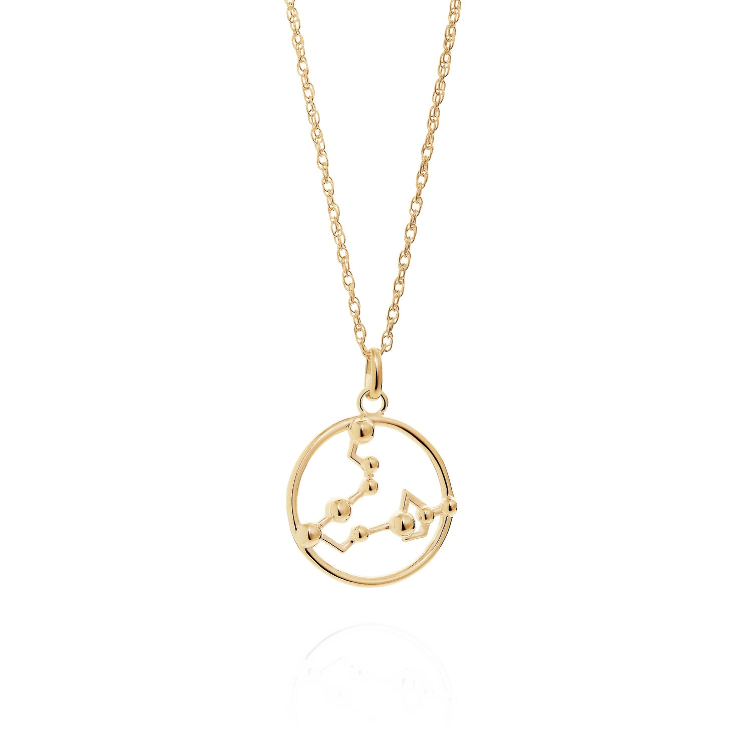 Gold Pisces astrology star sign Necklace