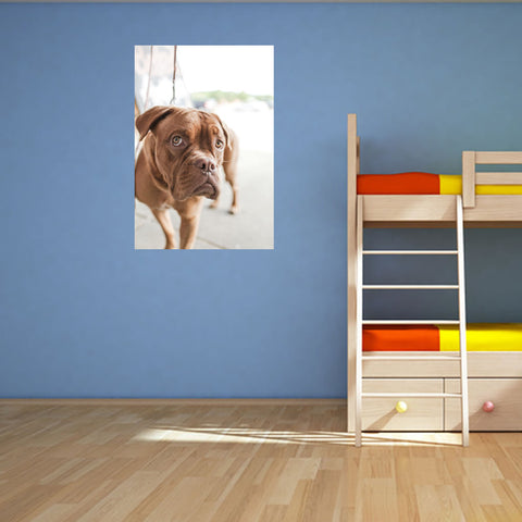 Simple Canvas With Frame (Gallery Wrap)