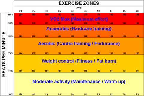 Understanding heart rate zones