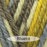 WYS Bluefaced Leicester DK Prints 100g