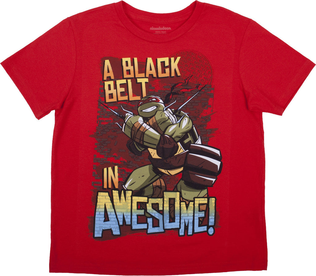 "Teenage Mutant Ninja Turtles ""Black Belt"" Tee - Boys"