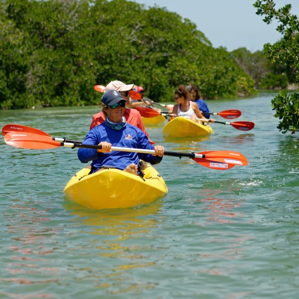 Kayaking Key West Backcountry