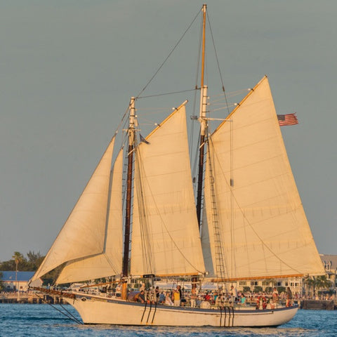Windjammer Classic Day Sail Featuring Special Musical Guest Geoff Kaufman - January 21st to February 21st, 2019