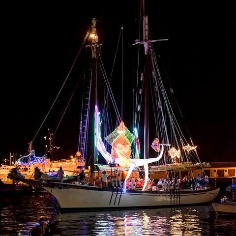 2017 Lighted Boat Parade