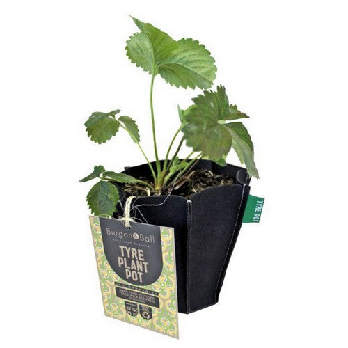 Eco Recycled Tyre Plant Pot