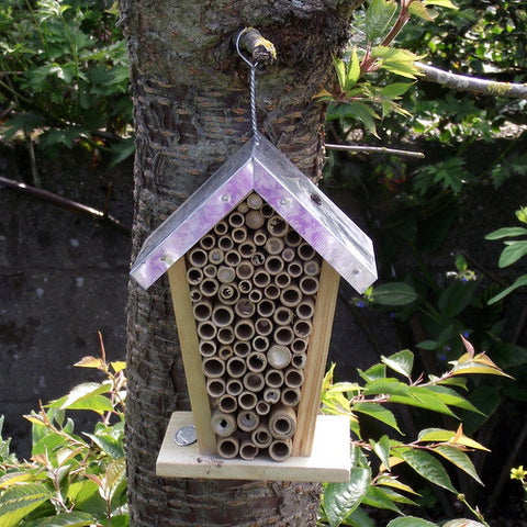 A Healthy Garden Needs Happy Bees! Provide Shelter For Your Buzzing Friends  With This Nesting House. The Honeycomb Design Will Make Them Feel Right At  Home ...