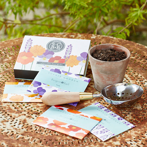 Edible Flower Garden Seed Set