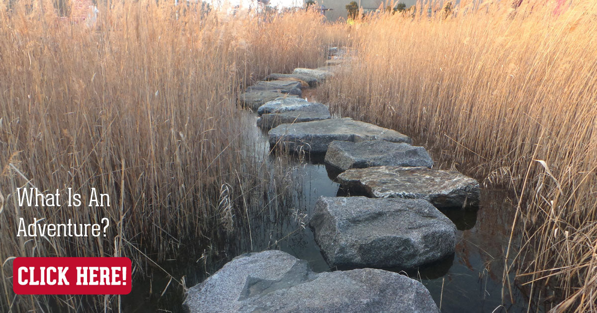 Stepping Stones Call To Action