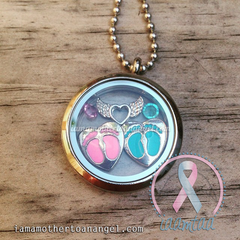 Double Hearts - Pink and Blue Themed Memory Locket