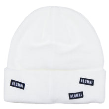 Load image into Gallery viewer, AOP BEANIE (ICE BLUE + WHITE)
