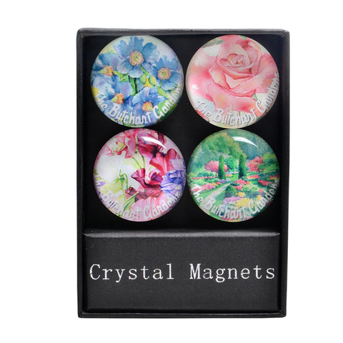 SIGNATURE SERIES DOME MAGNETS 4 PACK