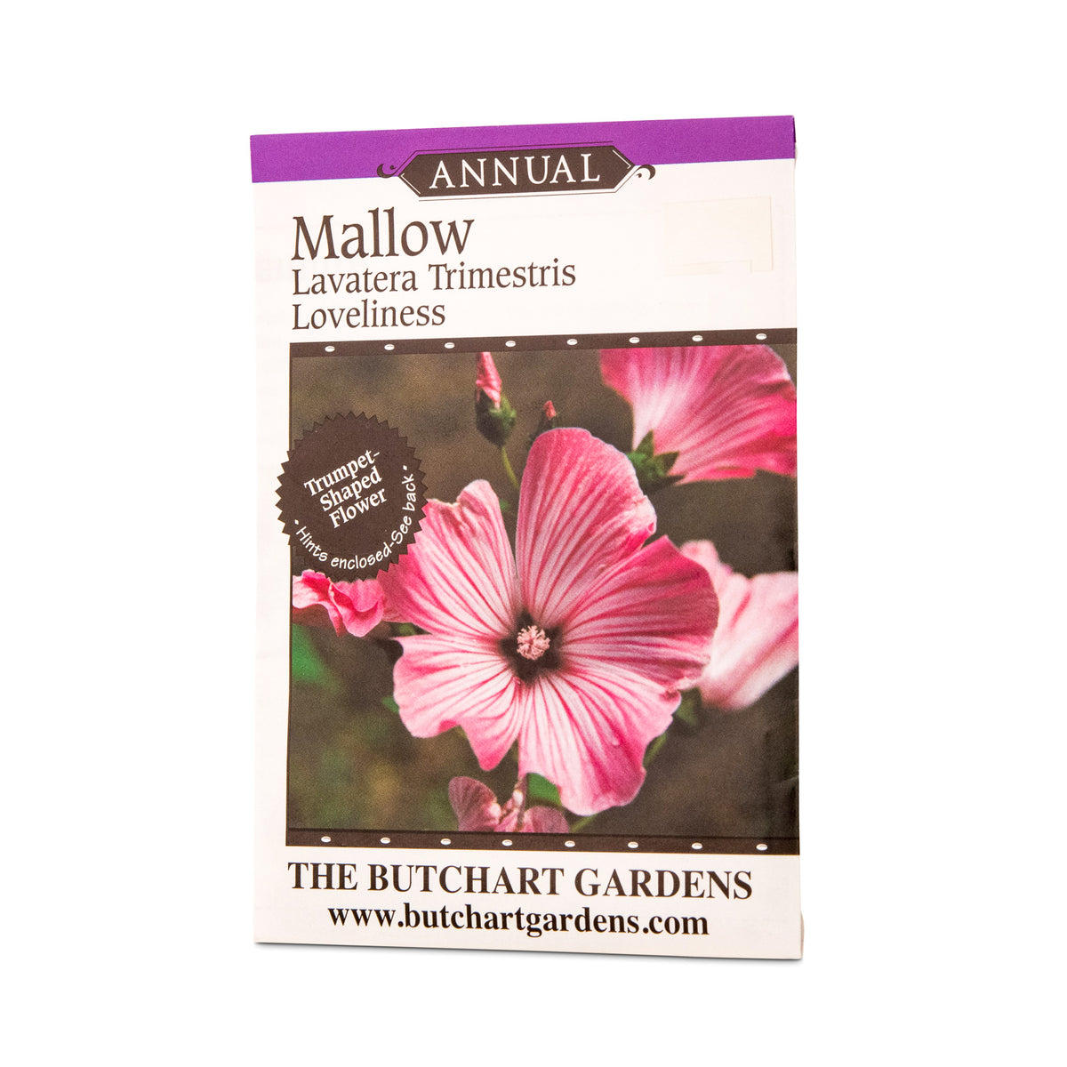 Seed mallow the butchart gardens seed gift store annual rosy pink trupet shaped flowers a hardy annual flowering from july to september care plant in full sun but keep sheltered from cold winds izmirmasajfo