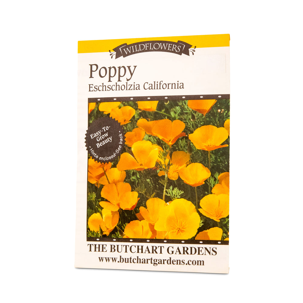 POPPY CALIFORNIA
