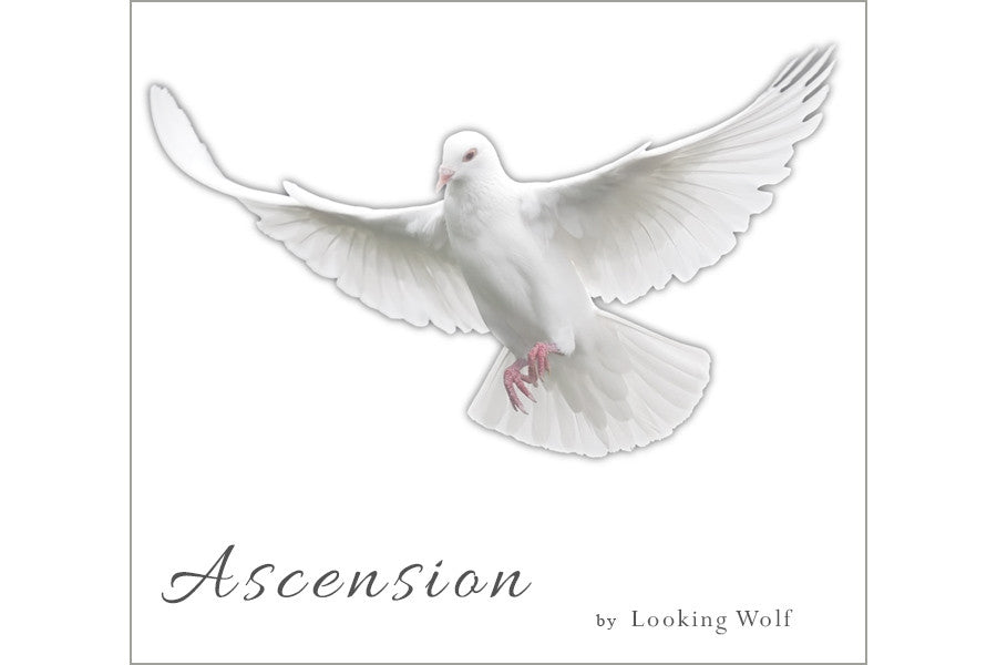 Ascension by Looking Wolf