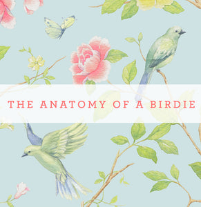 The Anatomy Of A Birdie
