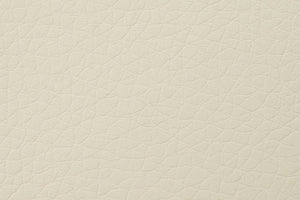 Kanvass cream PU leather swatche