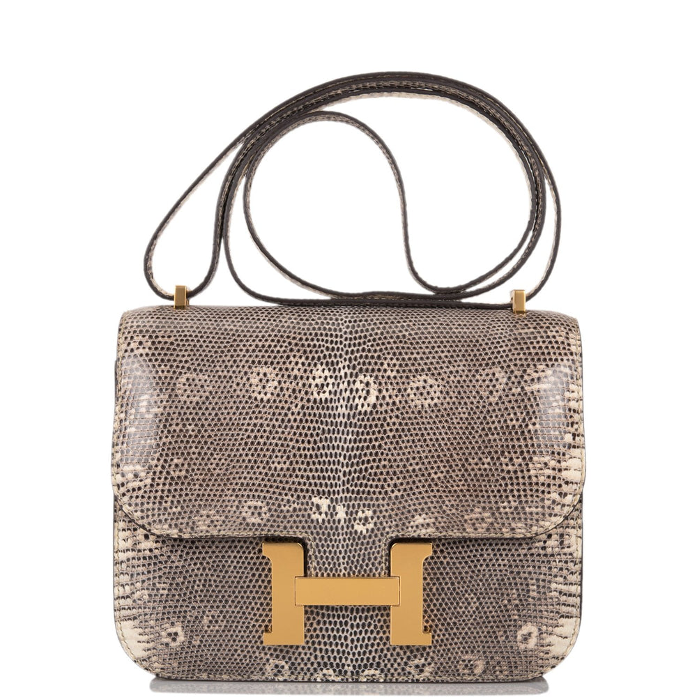 Hermes Shiny Ombre Lizard Constance 18cm Gold Hardware