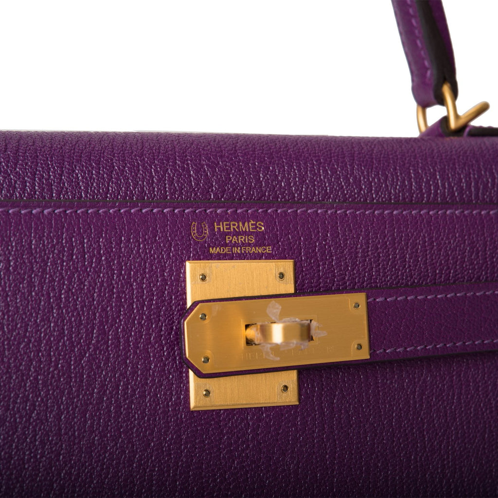 Hermes Horseshoe Stamp (HSS) Anemone Verso Chevre Sellier Kelly 28cm Brushed Gold Hardware