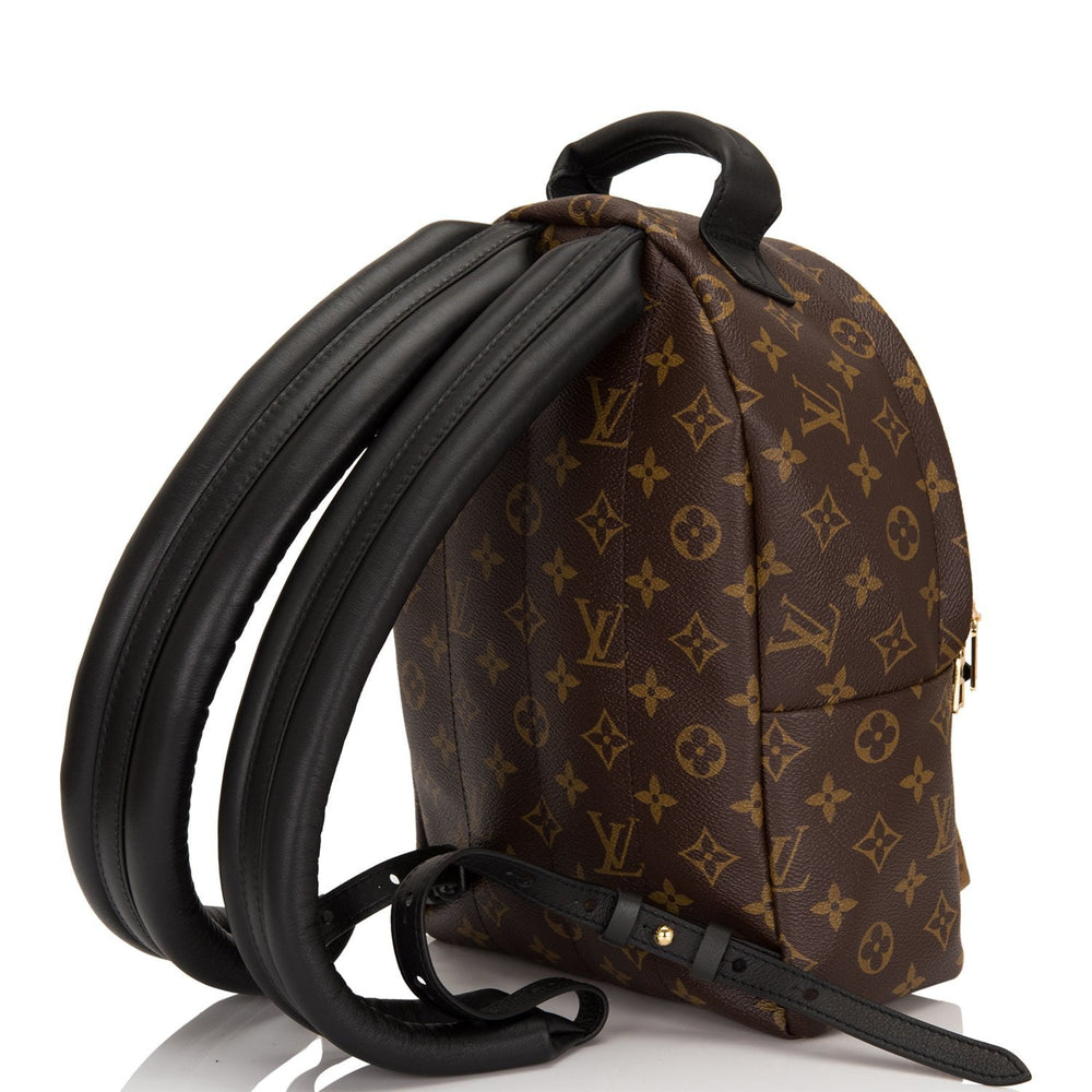 Louis Vuitton Reverse Monogram Palm Springs Backpack PM