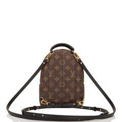 Louis Vuitton Palm Springs Backpack Mini