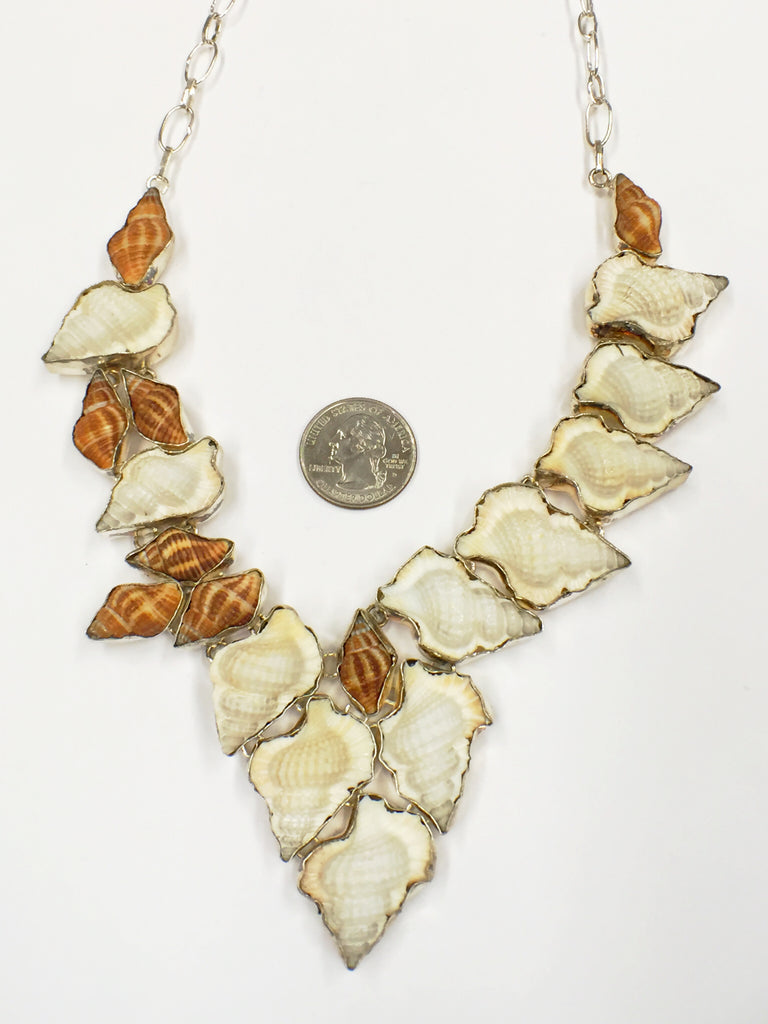 Sea Sells Seashells  SKU 135